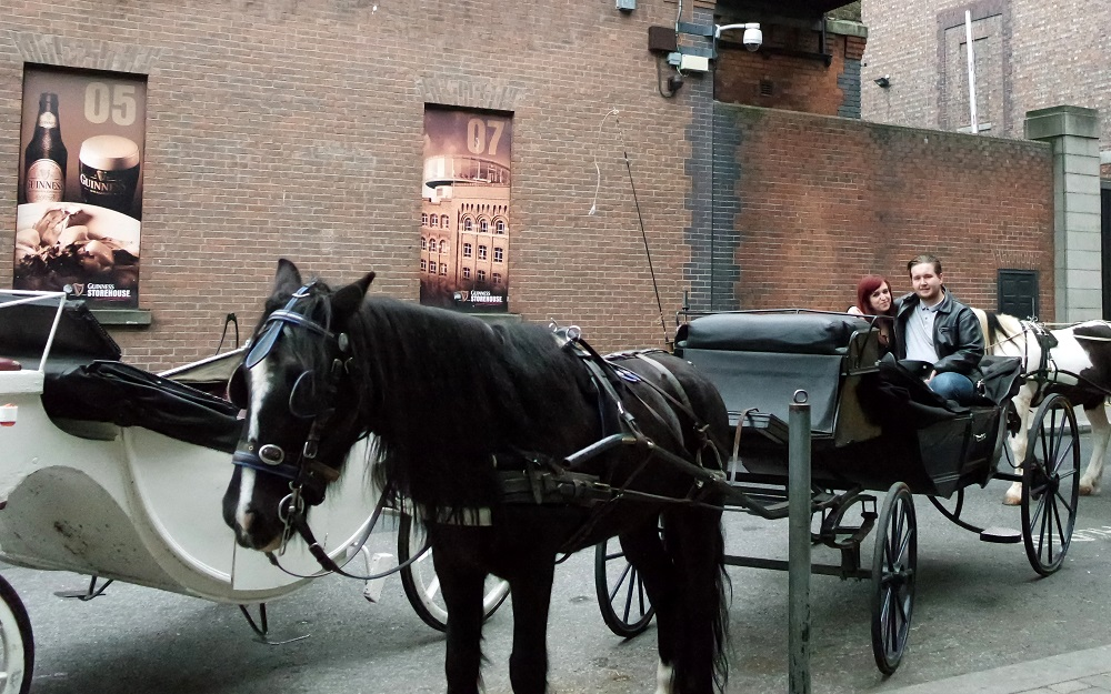 Dublin Horse Drawn Carriage Ride