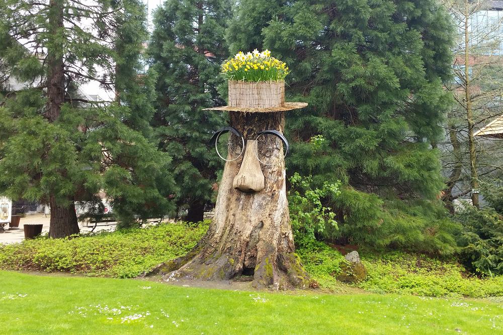 Antwerp weird tree