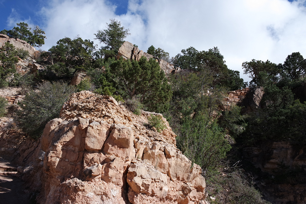 Grand Canyon trail 2