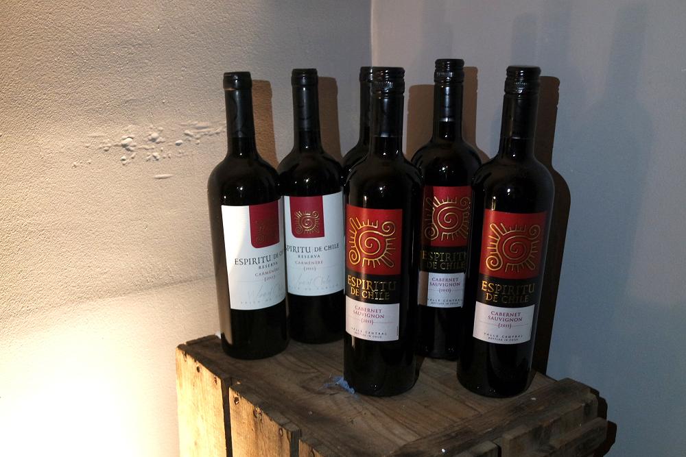 Espiritu de Chile Wine Tasting Reds