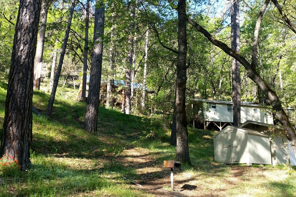 Yosemite Bug Lodge