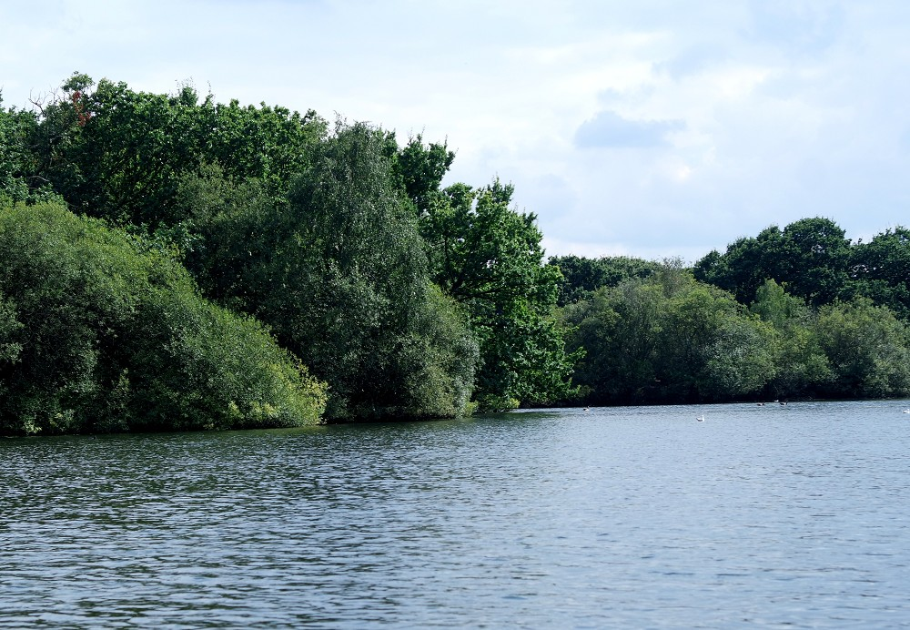 Hollow Ponds Boating Lake Whipps Cross