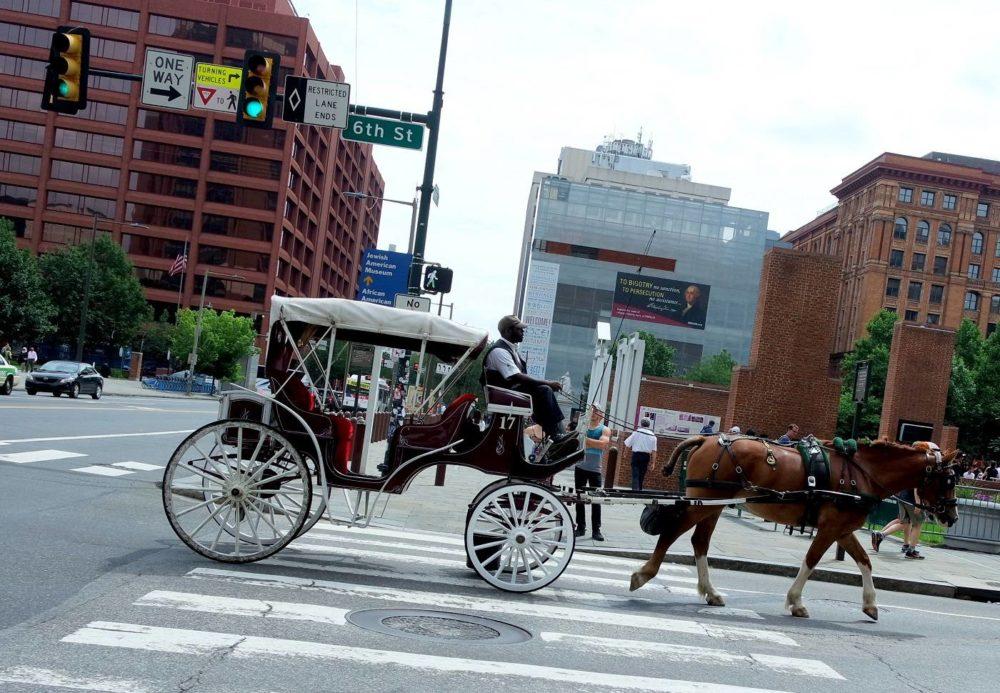 Philadelphia Horse and Cart