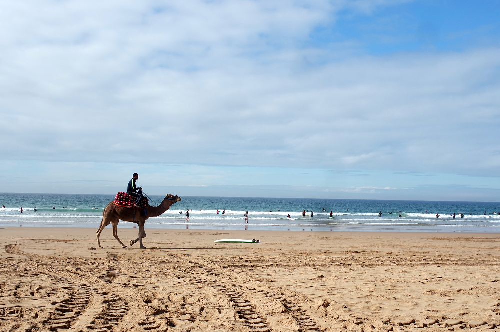 Surfing and Sun In Taghazout, Morocco