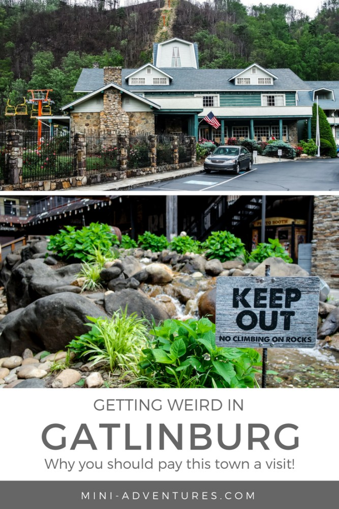 Looking for somewhere quirky and offbeat to spend a couple of days on a USA road trip? Gatlinburg is quite unlike anywhere I've ever experienced before. Bring on the fun!