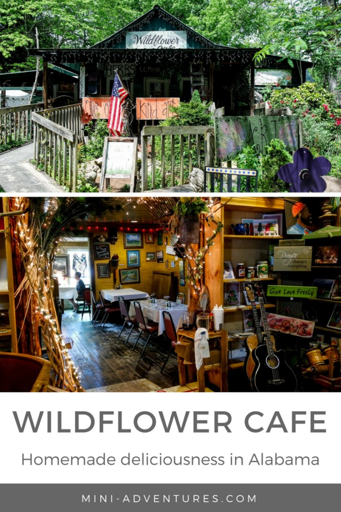 Homecooked food, made with love. Intimate, cosy dining spaces. In the middle of nature, Mentone's Wildflower Cafe is a pretty special find...