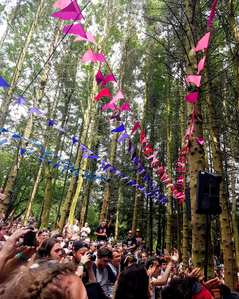 Forest stage at 2000 Trees 2017