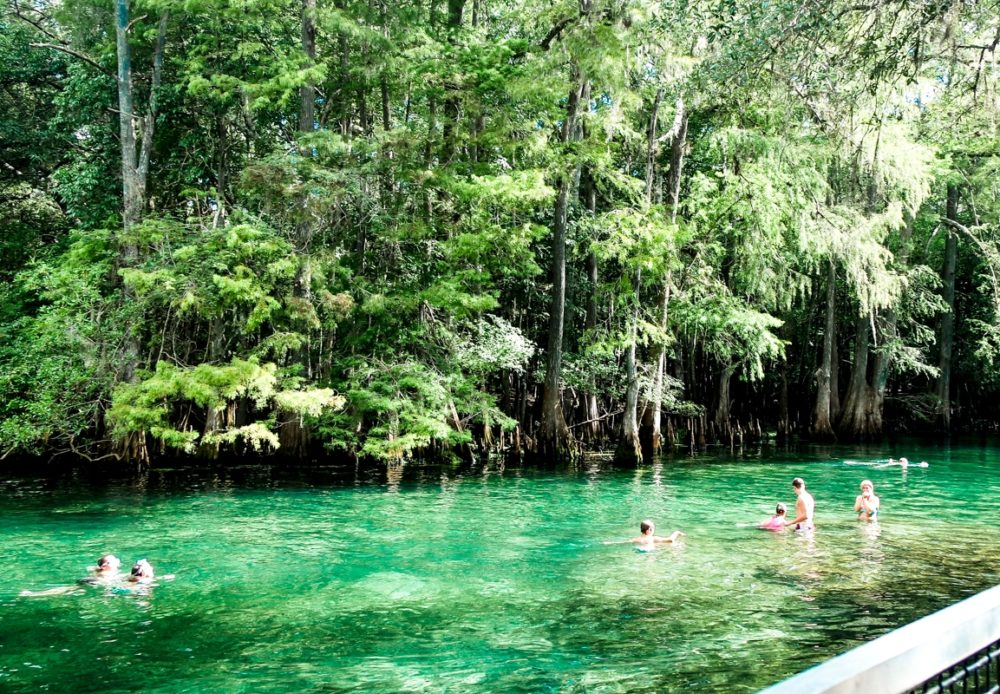 Natural springs in Florida