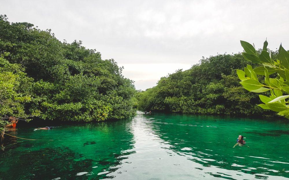 Snorkelling in a cenote in Mexico