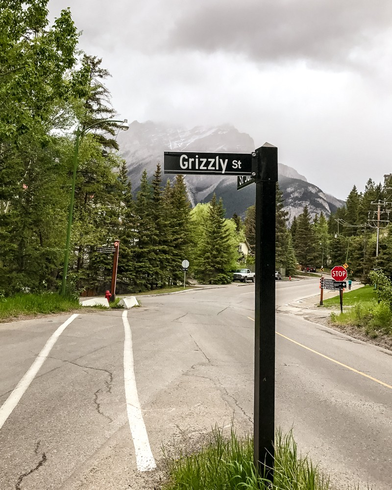 Grizzly Street signpost in Banff, Canada