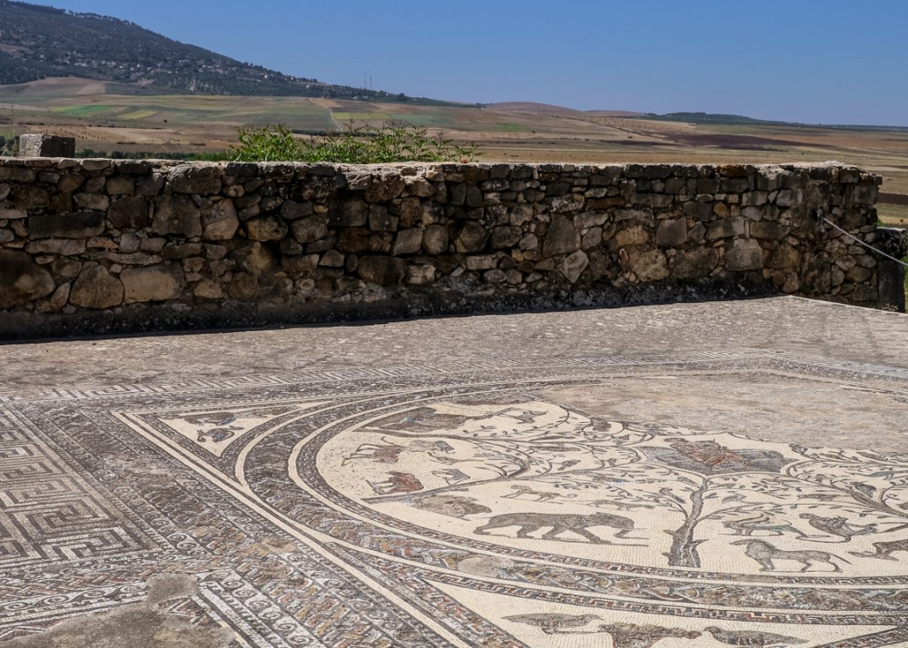 Mosaic floor at Volubilis, Morocco | Guide to Volubilis archaeological site
