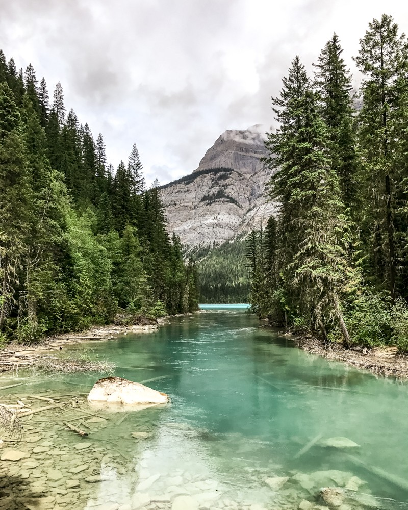 Landscape and river in Mount Robson Park, Canada