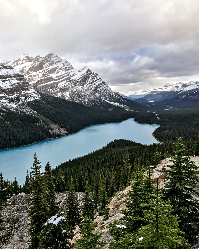 View of Peyto Lake from Bow Summit, Canada