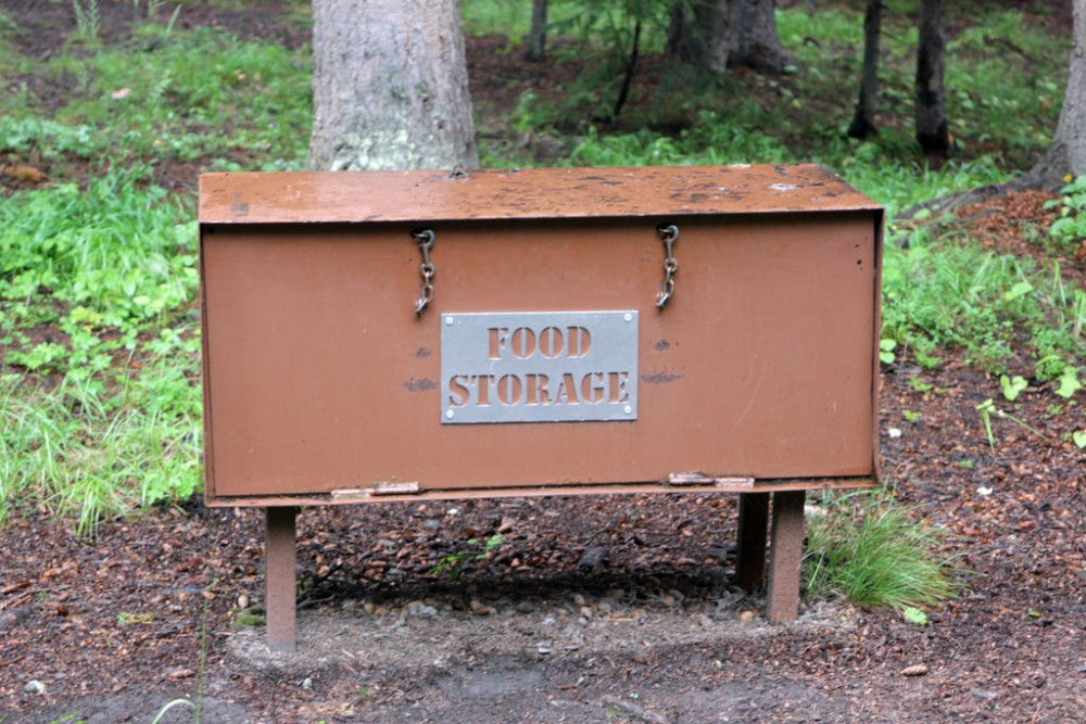 Bear box at a campsite in Canada | Guide to bear safety while camping in Canada
