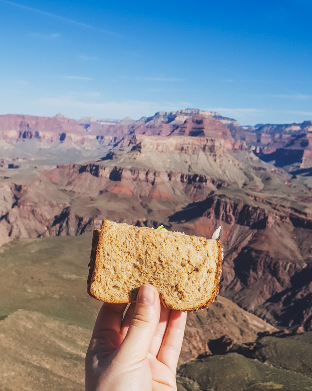 Cheese sandwich with Grand Canyon view