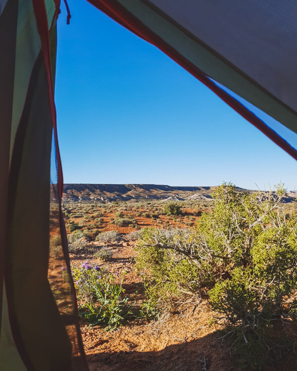 The view from the porch of my tent in Canyonlands National Park